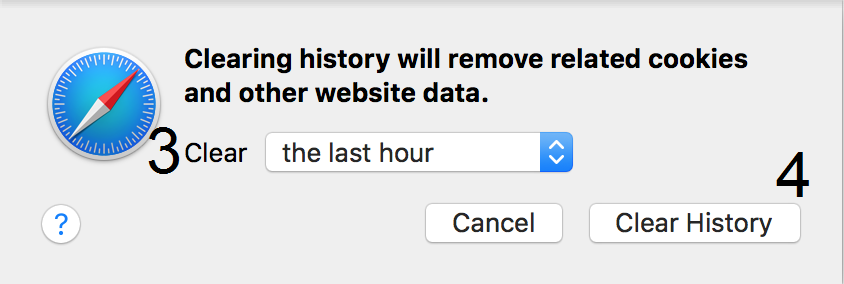 Print screen for deleting browser history in Safari steps 3 and 4