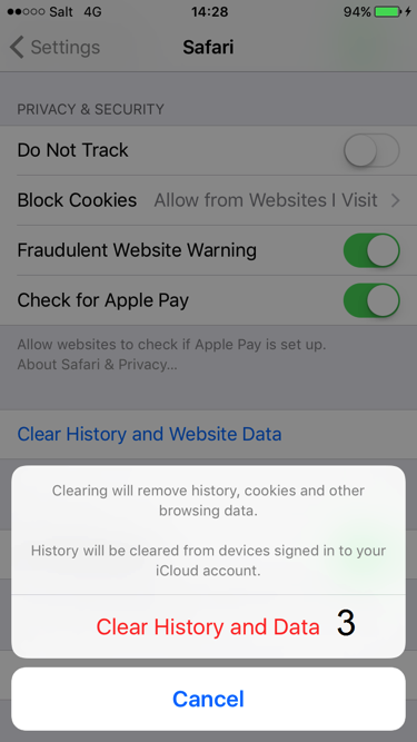Print screen for deleting browser history in iOS step 3